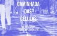 CAMINHADA DAS CÉLULAS